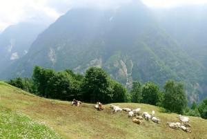 Val-Ossola