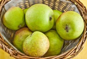 mela-renetta