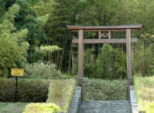 Villa-Carlotta-bosco-di-bambù