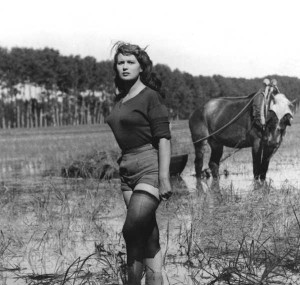 "Silvana Mangano in ""Riso amaro"" (1949) di Giuseppe De Santis"