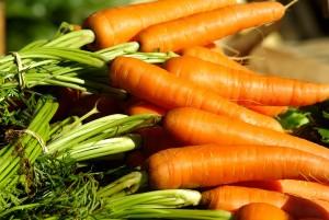 carota-di-Ispica