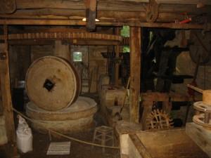 produzione-olio-d'oliva-antico-frantoio