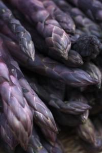 asparago albenga